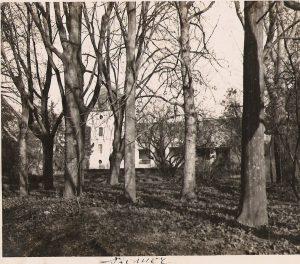 A kastély a park fái felől