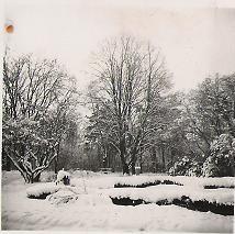 A park télen